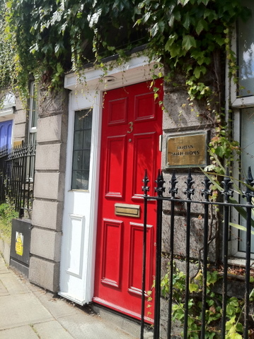 Beautiful red door, typically Dublin