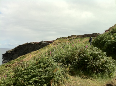 Sharp cliffs on the trail, hiking in Howth
