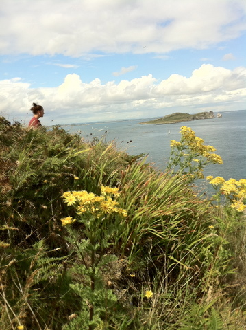 Nadia looking into the harbor of Howth surrounded by wild flowers