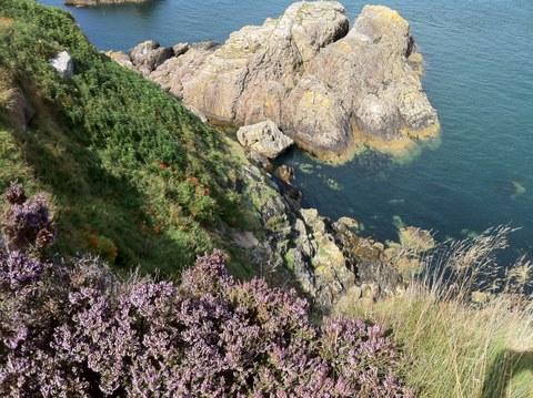 Ocean rocks in Howth