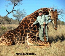 This is not call hunting