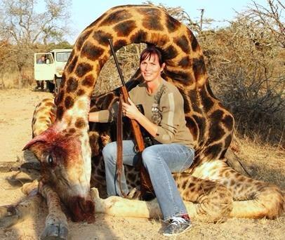 It does not take any courage to kill a giraffe