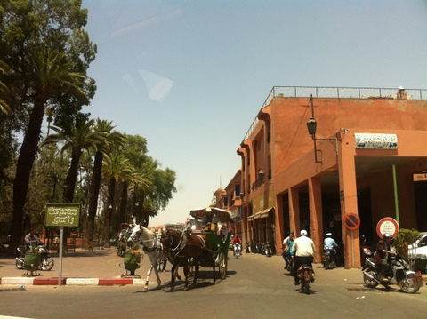 Horse drawn carriages near the Jemnaa El Fna