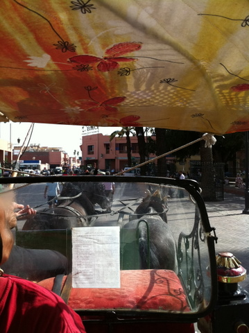 Traditional horse carriages are another travel option in the city
