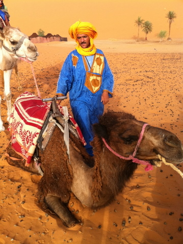 Our excellent guide getting the camels ready