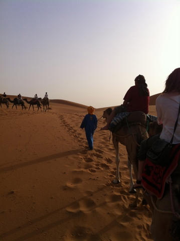 Camel trekking is an adventure of a lifetime
