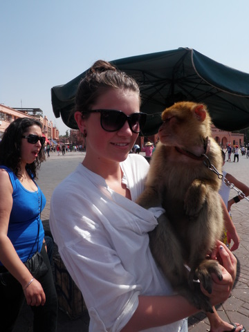 Nadia, many people want to put an end to the exploitation of the abused monkeys in Morocco