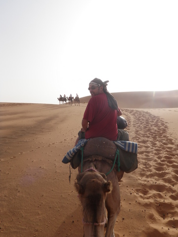 Travelling early in the morning when it's cool in the Sahara