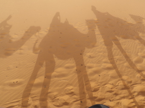 The classic camel shadows photo