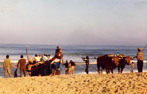 Bulls were an integral part of Praia de Mira