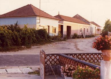 My neighbours in Serredade