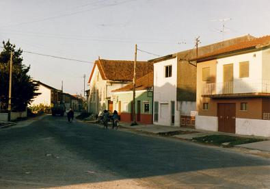 Houses in Camarneira