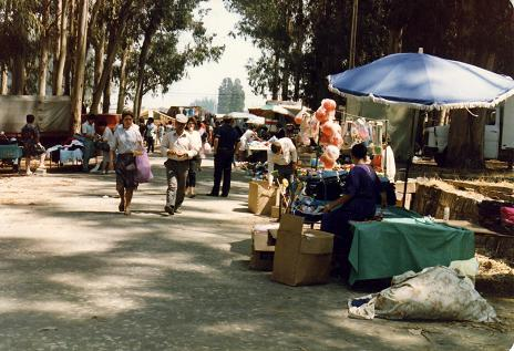 Outdoor market in Cantanhede