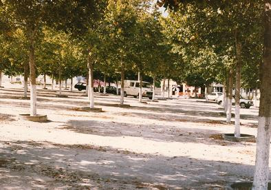 Febres square in the late seventies