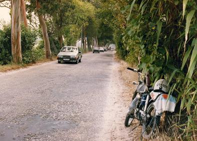 The road that leads to Praia de Mira