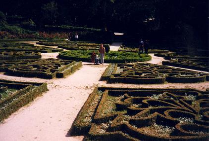 the beautiful Bussaco Gardens
