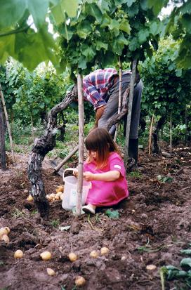 Nadia loved to pick potatoes and helping grandpa