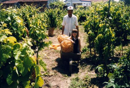 Father pushing potatoes and Nadia in a cart