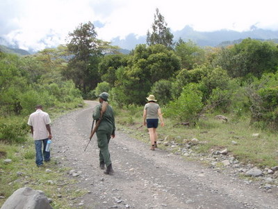 Arusha one of the few parks in Tanzania where you can go for a walking safari