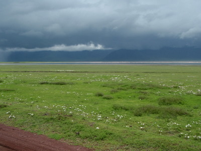 Sky getting dark in Ngorongoro