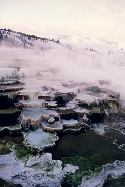 Spectacular hot pool terraces, Mammoth Hot Springs