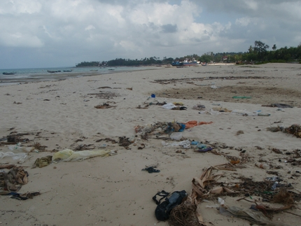 Garbage on the beach north of the Mtoni Resort